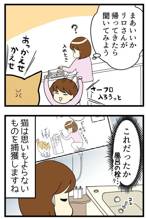 猫の不思議な戦利品漫画続き