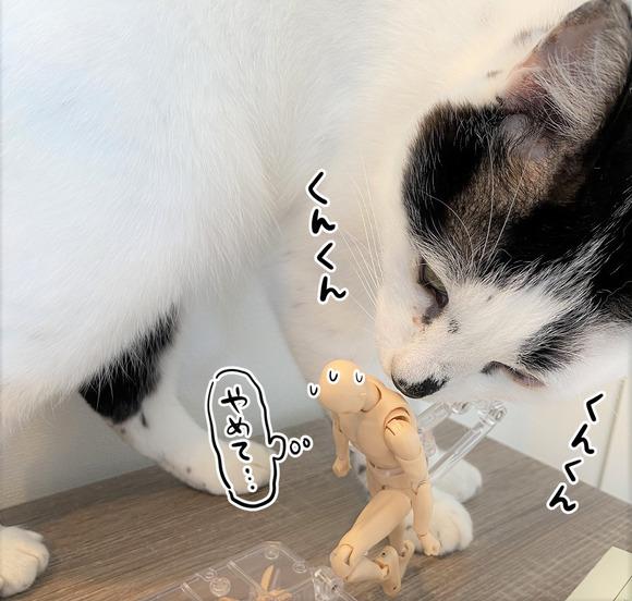 デッサン人形とヤタ