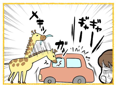 富士サファリパーク3