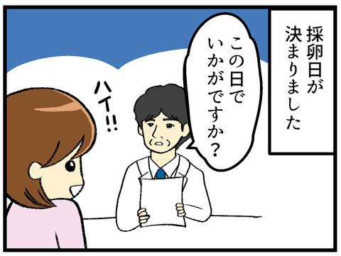 採卵日決定~ハプニング発生_1