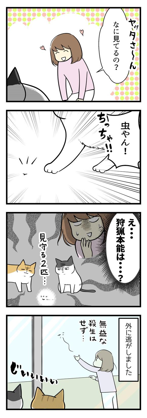 猫の本能がよくわからない!-2-