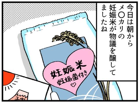 メルカリ妊娠米_1