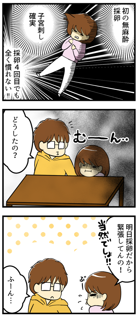 繊細全否定-採卵日前日ー_2