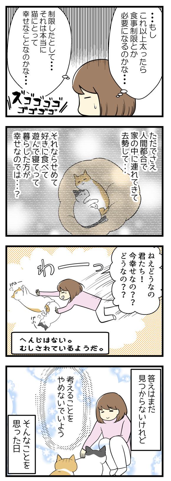猫の幸せを考えた日-2-