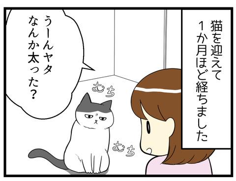 猫の抜け毛でギャップ漫画