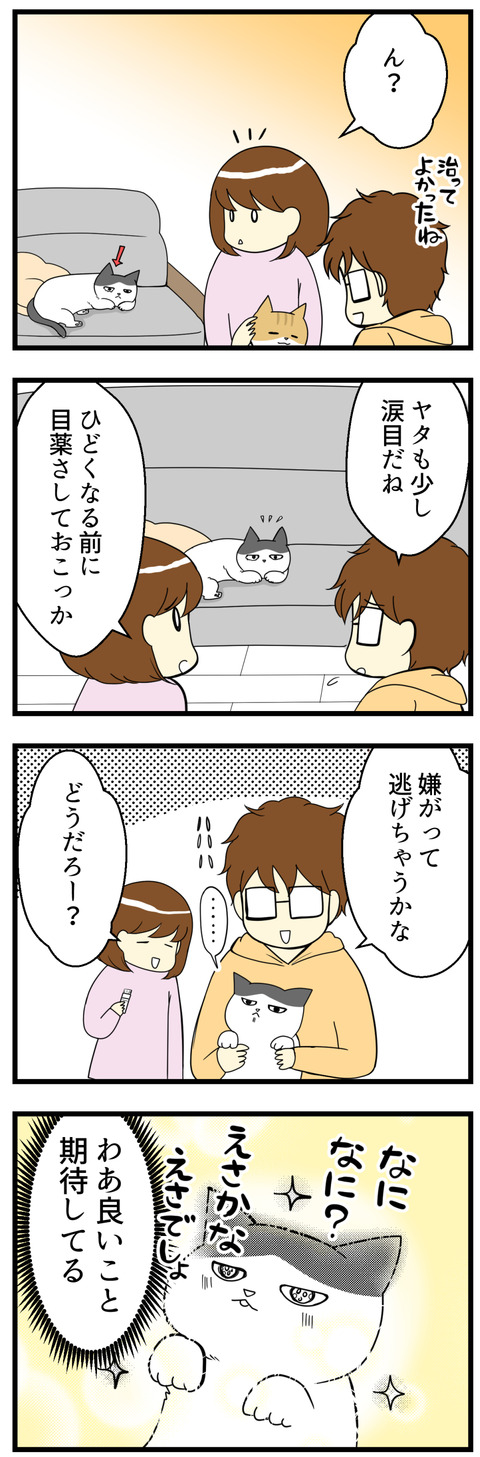 猫のきもち漫画