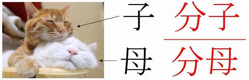 数学の裏技、分子と分母を覚えやすくする方法