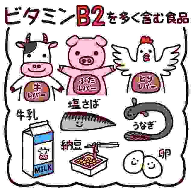 口内炎の治し方、ビタミンB2