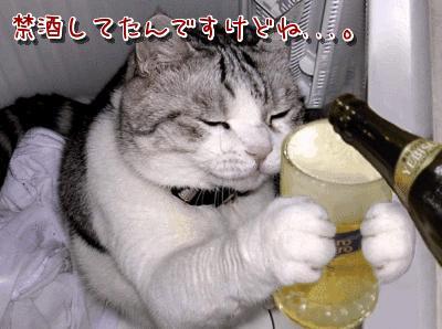 治療にはお酒を控える