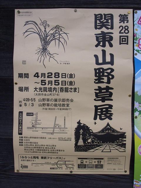 八瀬川桜まつり2017 028