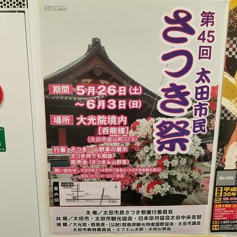 太田市民さつき祭り 001