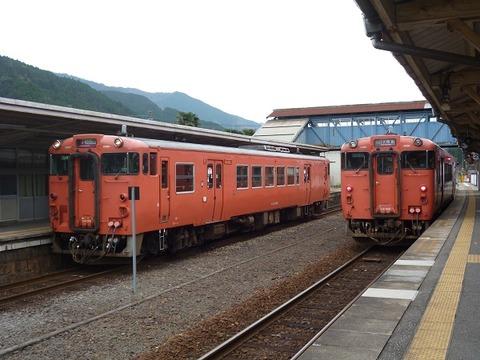 P1130001 (2)