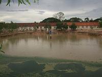 カンボジア ブッタの池 5