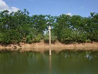 カンボジア ブッタの池 9