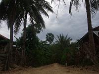 カンボジア ブッタの池 2