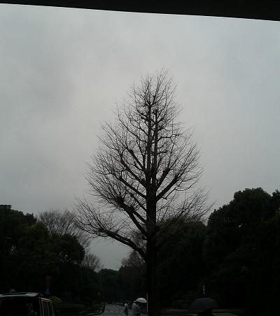 スーフェス73 外は冷たい雨