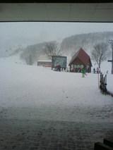 国際スキー場②