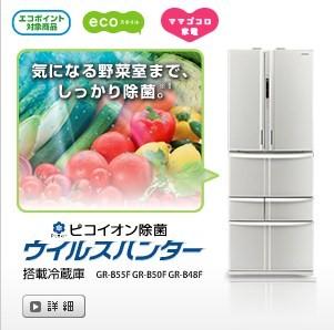refrigerator091113