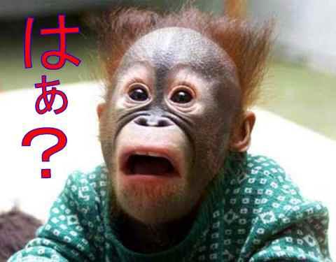 菊地最愛が苦手©2ch.netYouTube動画>10本 ->画像>232枚