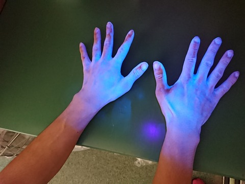手洗いなし