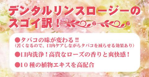 rose_17