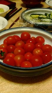 食卓トマト