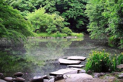 三四郎池の怪・・・