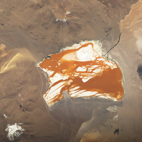 ボリビアの塩湖ラグナ・コロラダ