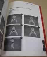 kibadachi-kaiten