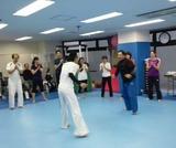 capoeira-3-20121223