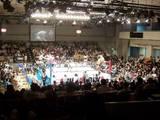 all-japan-professional-wrestling