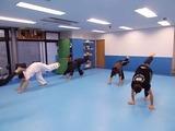 capoeira-training-2-20140112