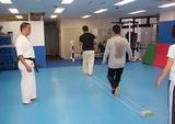 balance-beam-training-20111002