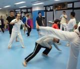 capoeira-2-20121223