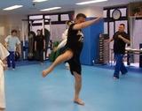 middle-kick-20120513