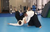 aikido-demonstration-20110612