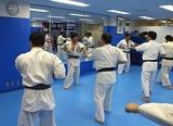 cross-training-seminar-karate-2-20120212