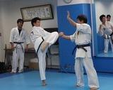 taekwondo-kick-20140323