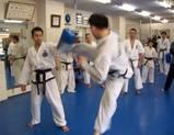 cross-training-seminar-20100131-taekwando-mit-geri