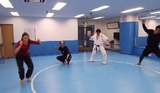fencing-training-4-20150201