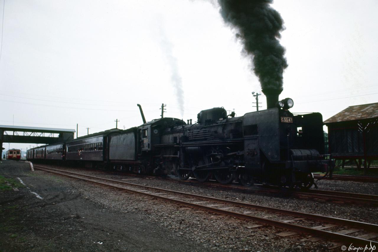 277-C5547x1280
