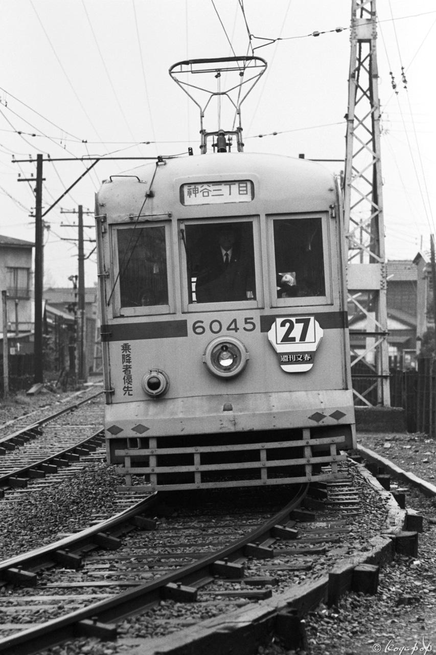 265- (14)x1280 1971