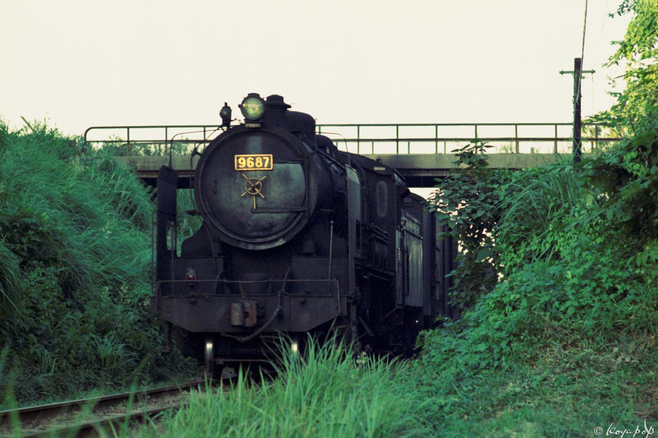 50C170 9600- (3)x1280