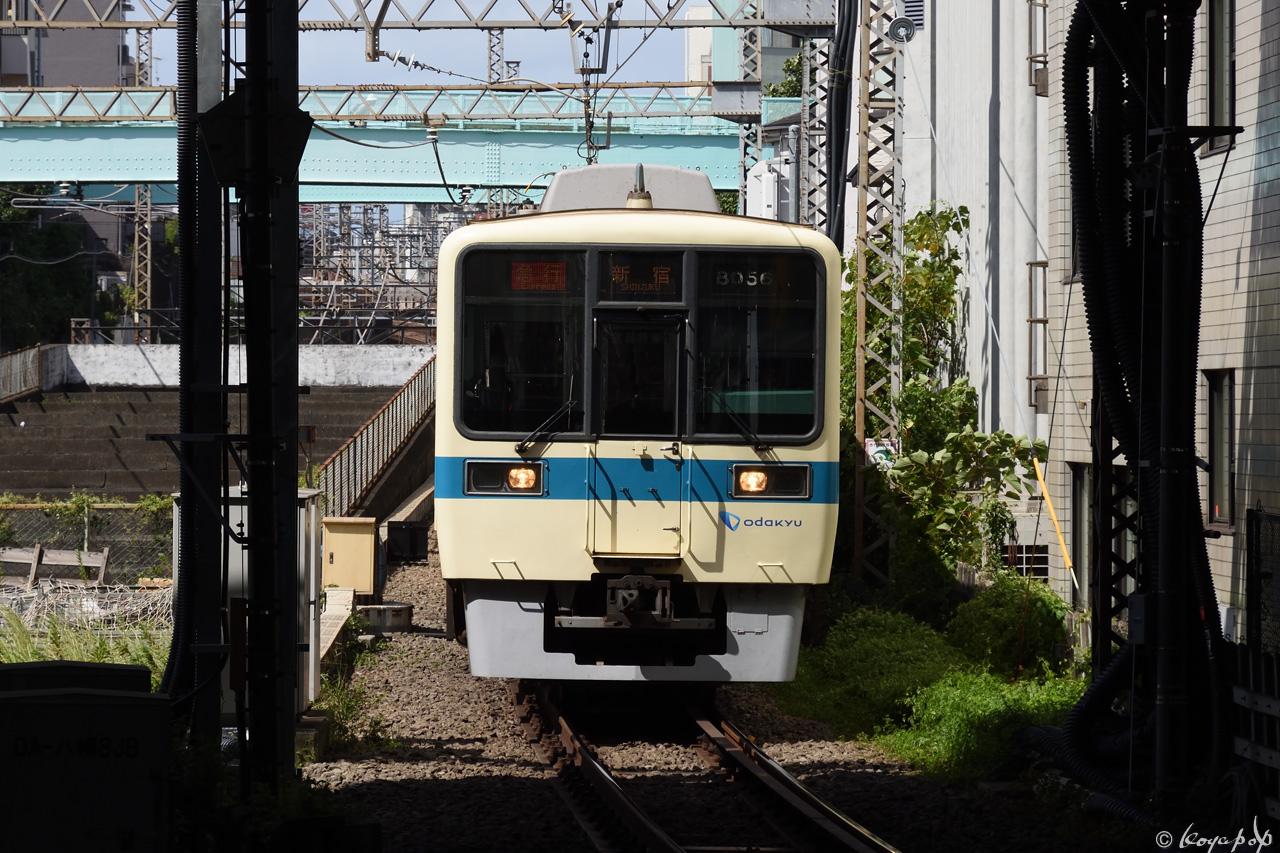 190923R-342x1280