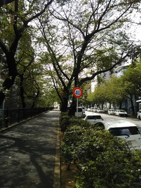 [画像:a9467392-s.jpg]