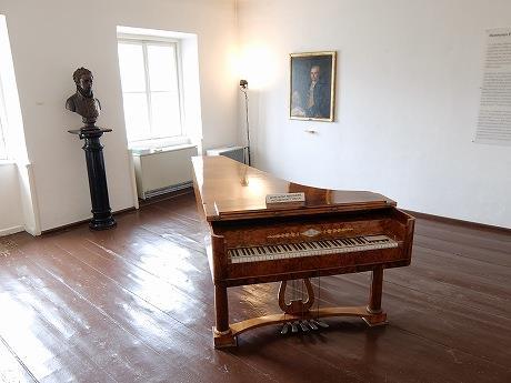 シェーンブルン宮殿、シュテファン大聖堂、国立歌劇場、ベートーヴェン記念館、デメルなど、芸術とカフェを堪能