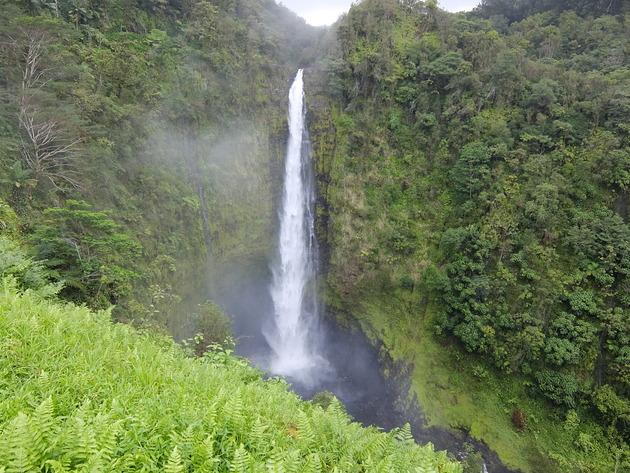 細長くてスタイリッシュな滝。水量ある時はもっと迫力あるようです