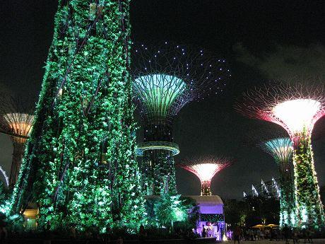 週末シンガポール旅行3日目 ~チャイナタウン、アラブストリートなどを散策→夜景を見にガーデンズ・バイ・ザ・ベイのスーパーツリーグローブへ~