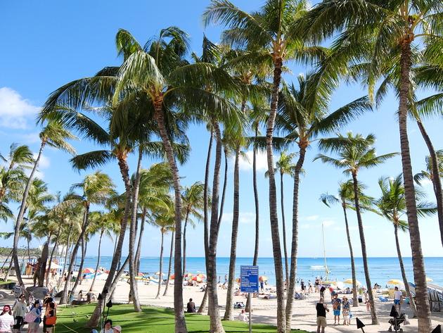 正直に言います。本当は前からハワイに行きたかったんです!ショアラインホテルを拠点に色々と行ってきましたよ。予約必須の人気店「MWレストラン」とか。