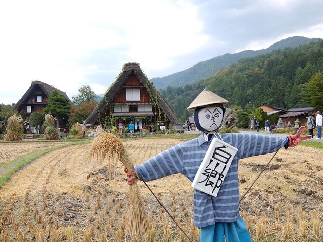 下呂から金沢行く途中に白川郷に寄ってみた。